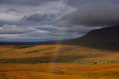 Härligt landskap i Alaska arkivbild