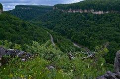 Härligt landskap i en bergdal Grön lövverknolla för sommar Arkivfoto
