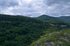 Härligt landskap i en bergdal Grön lövverknolla för sommar Fotografering för Bildbyråer