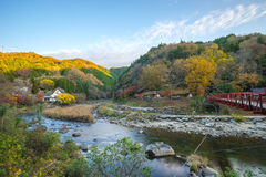 Härligt landskap i höst på Korankei, Japan Royaltyfria Foton