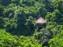 H?rligt landskap i indonesia arkivbild