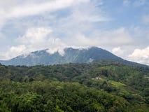 H?rligt landskap i indonesia royaltyfria bilder