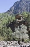 Härligt landskap i Kreta Arkivfoto