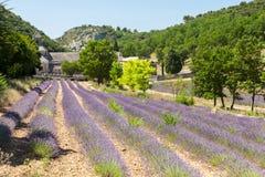 Härligt landskap i Provence, Frankrike Arkivfoton
