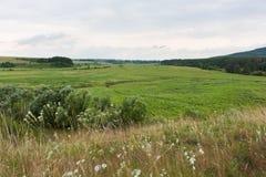 Härligt landskap i Ukraina Royaltyfri Bild