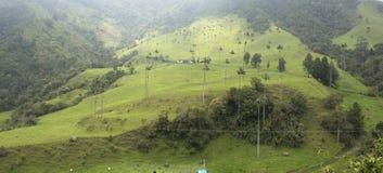 Härligt landskap i Valle de Cocora, Salento, Colombia Arkivbild
