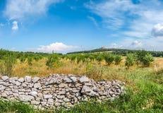Härligt landskap med berömda Castel del Monte i Apulia, Italien Arkivfoton