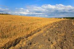 Härligt landskap med det nytt skördade vetefältet och plöjd jord mot blå himmel med moln Arkivfoto