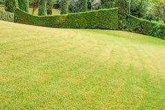 Härligt landskap med exakt klippt gräs och dekorativa buskar Costa Brava, Spanien royaltyfria bilder