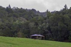 Härligt landskap med gazeboen i Napa Valley arkivfoto