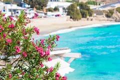 Härligt landskap med havssikt på den Mykonos ön, Grekland Royaltyfri Foto
