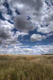 Härligt landskap med jordbruksmark i Andalusia Arkivfoton