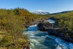 Härligt landskap med kanjonen, floden och berget Royaltyfri Bild