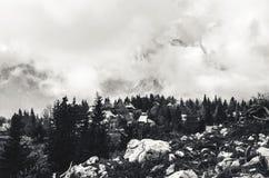 Härligt landskap med träd på en stenig kulle och förbluffamoln royaltyfri foto