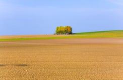 Härligt landskap med tunnland Royaltyfri Foto