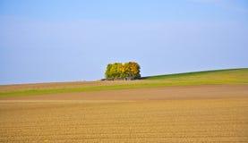 Härligt landskap med tunnland Royaltyfri Fotografi