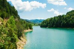 Härligt landskap med vatten, berg, skogen och klar himmel Fotografering för Bildbyråer