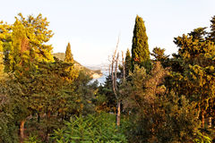 Härligt landskap nära Parga, Grekland, Europa Arkivfoton