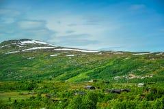 Härligt landskap och landskap av Norge, grönt landskap av kullar och berget Royaltyfri Foto