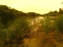 Härligt landskap på bakgrunden av floden arkivbilder