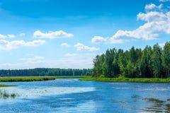 Härligt landskap på en solig dag - en flod Arkivbild