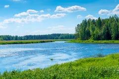 Härligt landskap på en solig dag - pittoresk ren flod i th Royaltyfri Bild