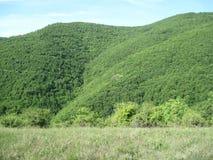 Härligt landskap på Jasenje, Serbien royaltyfria foton