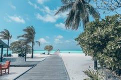 Härligt landskap på Maldive öar Royaltyfri Bild