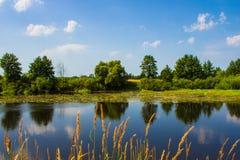 Härligt landskap på sjön i sommaren arkivfoton