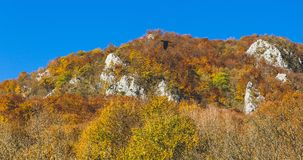 Härligt landskap under hösttid mycket av färger och älskvärd blå himmel arkivbild