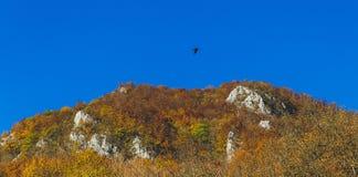 Härligt landskap under hösttid mycket av färger och älskvärd blå himmel fotografering för bildbyråer
