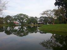 Härligt landskap vid floden i parkerar royaltyfri foto