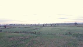 Härligt landskapfält i morgonen lager videofilmer