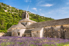 Härligt landskaplavendelfält och en forntida klosterabbotskloster Arkivfoto