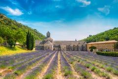 Härligt lavendelfält och en forntida klosterabbotskloster Abbaye N Royaltyfria Bilder