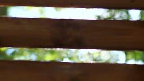 Härligt lensflaresken lager videofilmer