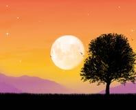 härligt månsken Royaltyfri Foto