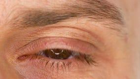 Härligt manlig ögonnärbild för blinka långsam rörelse stock video