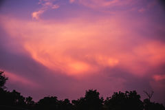 Härligt moln på blå himmel i aftontid för bakgrund Arkivbilder