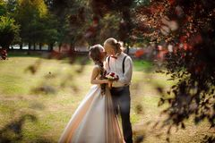 Härligt och ungt gift par som kysser på ett fält för grönt gräs med träd arkivbild