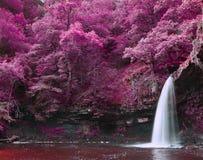 Härligt omväxlande kulört overkligt vattenfalllandskap Royaltyfria Foton