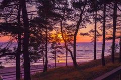härligt over hav skjuten sommarsolnedgång Arkivbilder