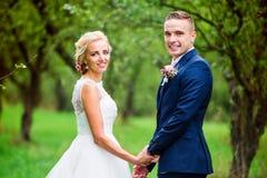 härligt parbröllop Royaltyfria Foton