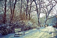 Härligt parkera i vinter Fotografering för Bildbyråer