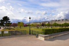 Härligt parkera med träd på Champset-Elysees, Frankrike Royaltyfri Foto
