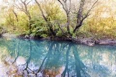 Härligt pittoreskt höstlandskap av floden i berget Arkivbild