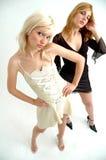 härligt posera för modeller royaltyfri fotografi