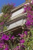 härligt provencal blommahus Arkivfoton