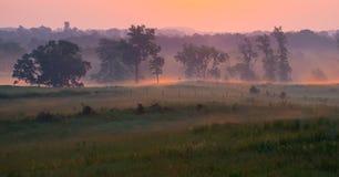 Härligt sörja träd på dimmig morgon i Gettysburg som den nationella militären parkerar royaltyfri bild