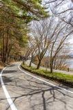 Härligt scenary av den Kawaguchiko lakesiden på den Momiju tunnelen Royaltyfria Foton